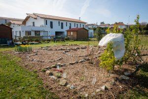 Graines de liberté, Atelier Jardin au Foyer François de Paule, Anglet