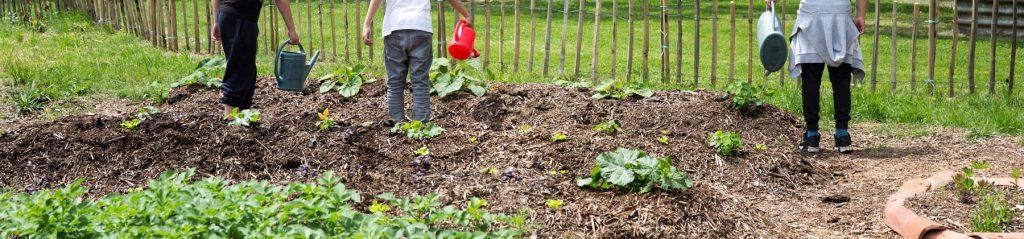 jardin-partage-mercredi-bayonne-2