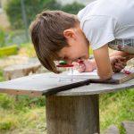 jeu pédagogique la faune du jardin